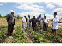 Tarımsal eğitimlerle çiftçiye katkı sağlanıyor