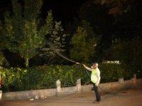 Aksaray Belediyesi haşerelere karşı ağaçları ilaçlıyor
