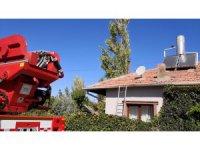 Aksaray'da ağaç budarken kafası ipe dolanan şahıs hayatını kaybetti