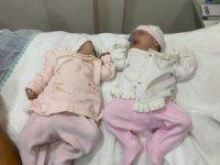 Sokağa terk edilen 3 kardeş bebek, koruma altına alındı