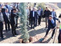 Aksaray'ın il oluşunun 30. yılı 30 bin fidan dikilerek kutlandı