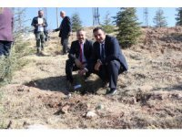 Aksaray'da 22 ayrı noktada 90 bin fidan toprakla buluşturulacak