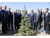 """Bakan Varank: """"Gezi Parkı'nda birkaç ağaç için sokağa çıkanların artan orman varlıkları ile ilgili tek bir sözünü duyamazsınız"""""""