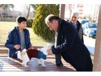 Ereğli Belediyesi sokak hayvanlarına kucak açıyor