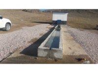 Aksaray'da köylere hayvan içme suyu tesisi yapıldı