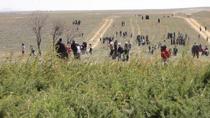 Kulu'da 7 bin 500 fidan toprakla buluşturuldu