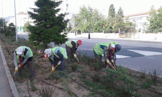 Seydişehir'de park ve bahçelerdeki çalışmalara kadın eli deydi