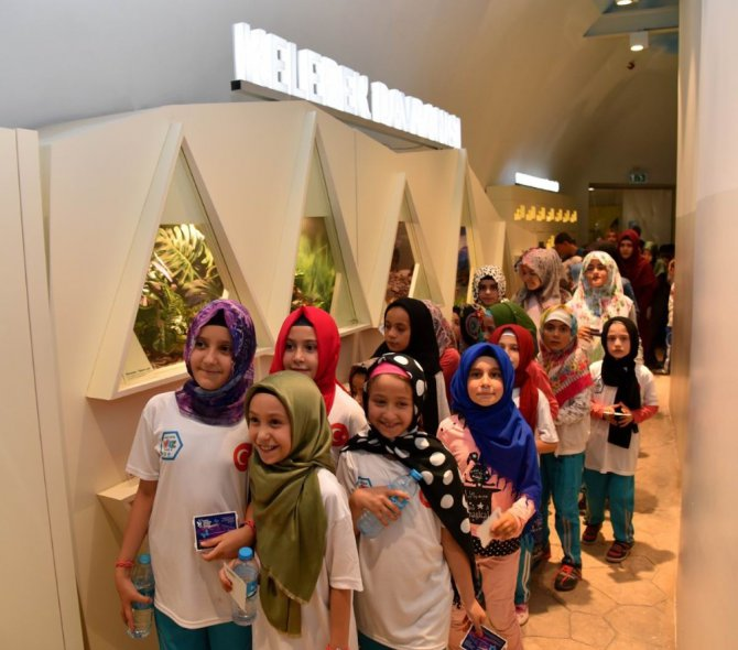 Hatıra Yaz Okulu öğrencileri Tropikal Kelebek Bahçesi'ni gezdi