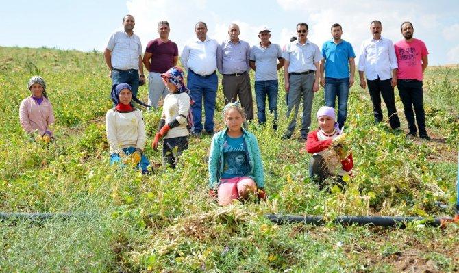 Aksaray'da yapılan gölet kıraç topraklara hayat verdi