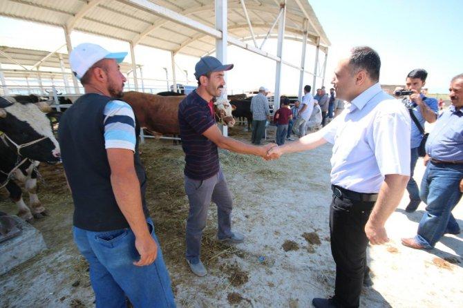 Başkan Özaltun'dan kapalı hayvan pazarı ziyareti