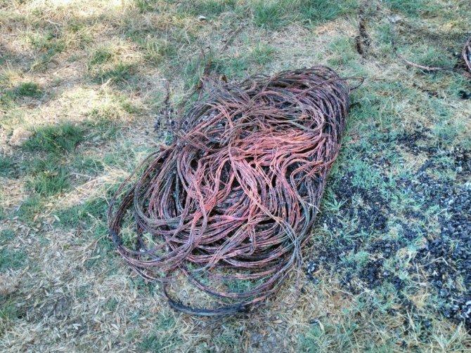 Çaldıkları kabloları yakmak isterken yakalandılar
