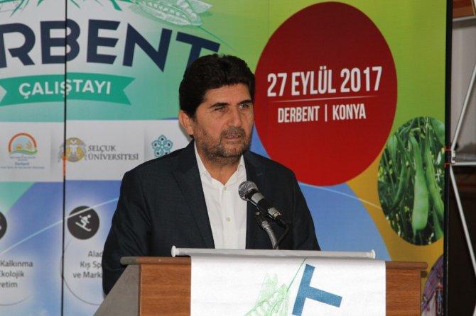"""Senede 13 ay Derbent'i yaşamak"" çalıştayı düzenlendi"