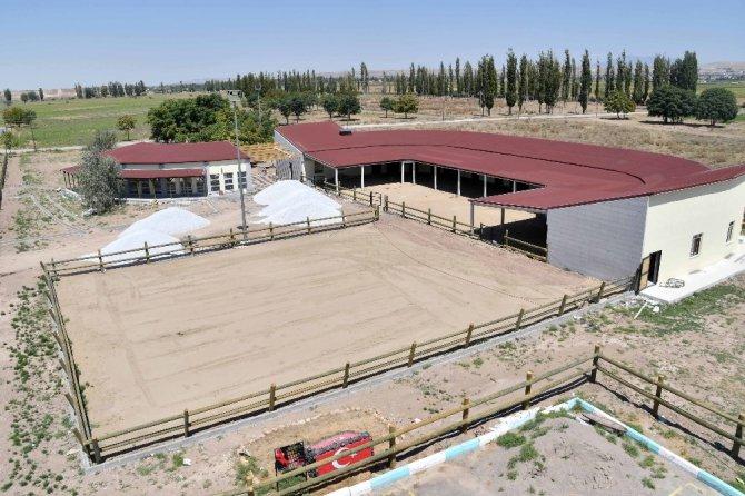 Aksaray'a at binicilik tesisi