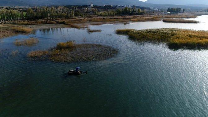 Beyşehir Gölü kıyısındaki istenmeyen sucul bitkiler kesiliyor