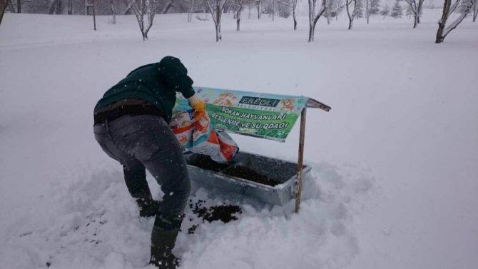 Ereğli Belediyesinin kar mesaisi sürüyor