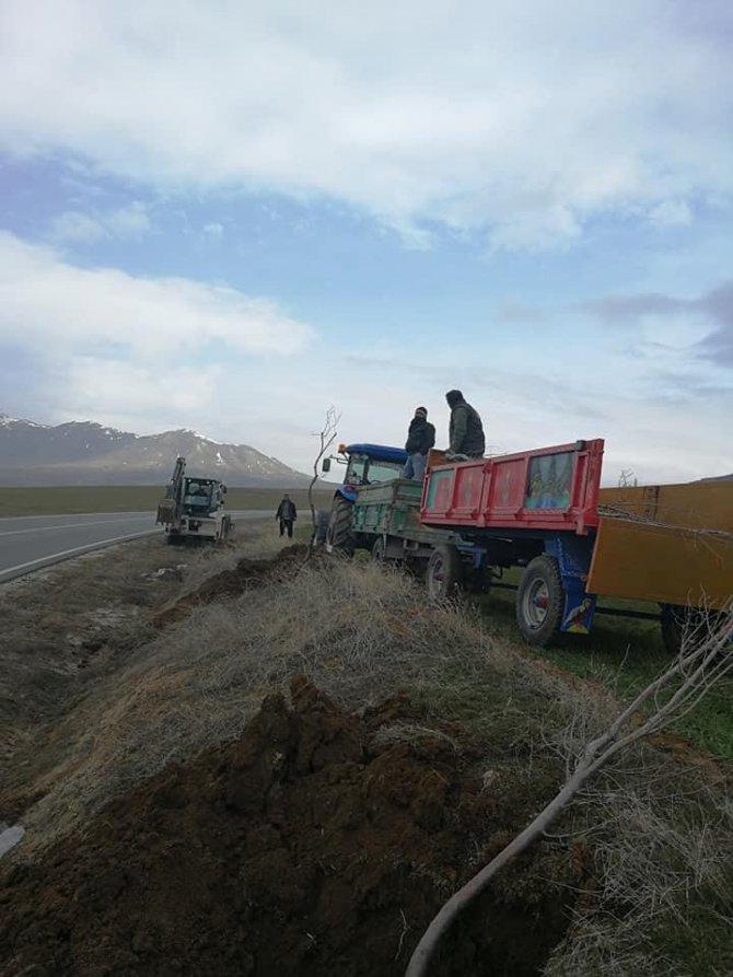 İl Özel İdaresi desteğiyle 500 adet ağaç dikildi