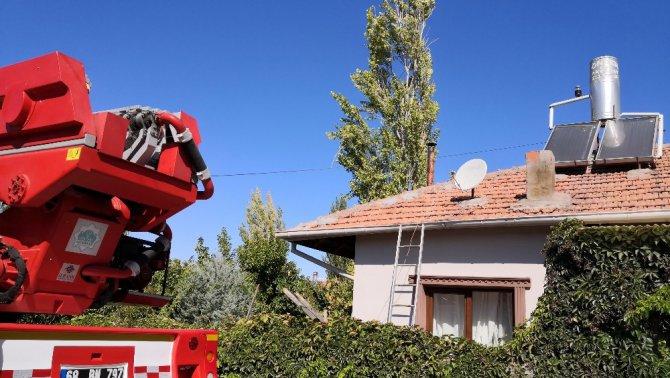 Ağaç budarken kafası ipe dolanan şahıs hayatını kaybetti