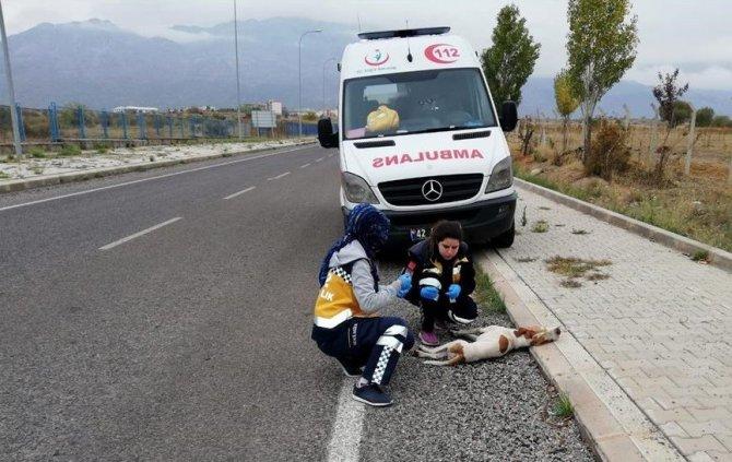 Konya'da 112 çalışanları 'Paşa' için gözyaşı döktü