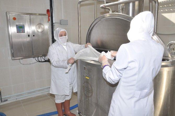 Analiz laboratuvarıyla sütün kalitesi arttırılırken, üreticilere 7,5 trilyon destek ödendi
