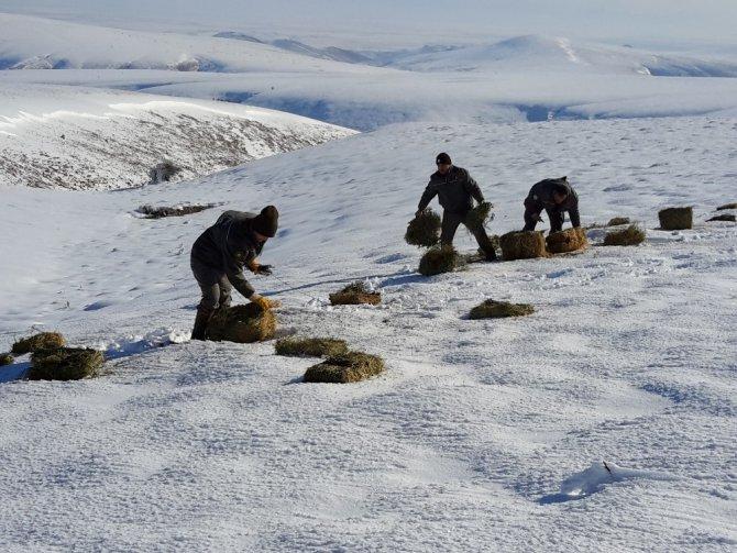 Yaban hayvanları için doğaya 1 ton kuru yonca bırakıldı