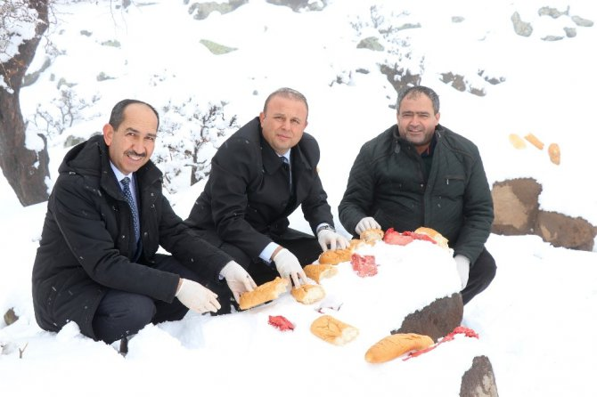 Aksaray'da yaban hayvanları için doğaya yem bırakıldı