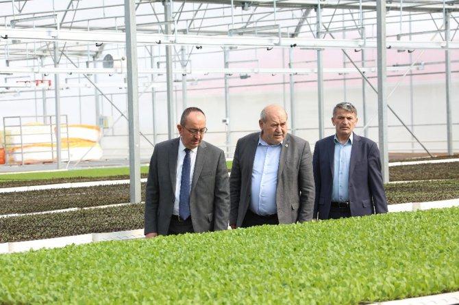 Paydaşlar 'Sebze Fidesi Üretim Tesisi'nin geleceği için buluştu