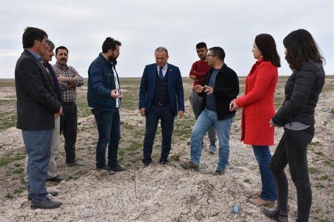 Aksaray'da meralar gürleşiyor hayvancılık gelişiyor
