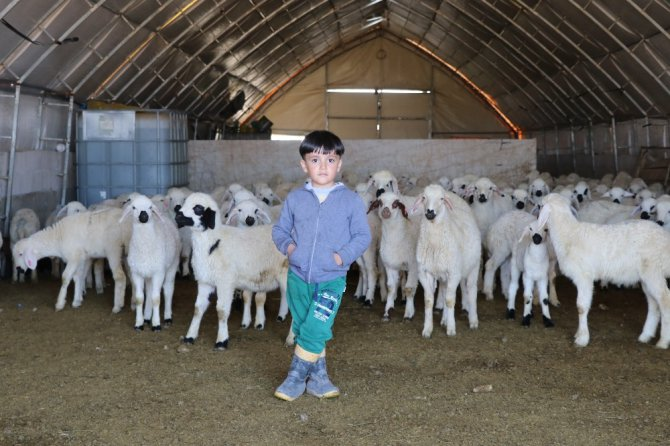 Tarım ve hayvancılık üretimi desteklemelerle 16 yılda yüzde 1023 arttı
