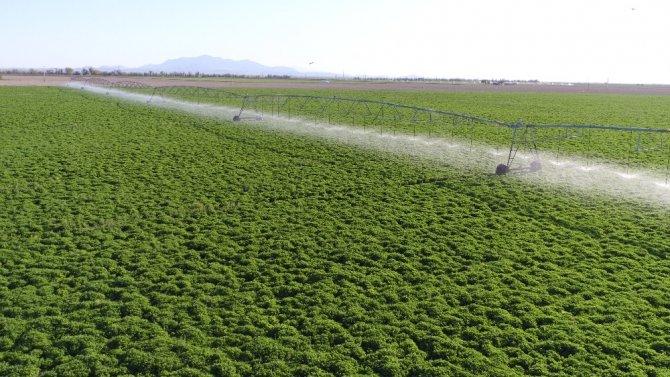 Aksaray'da sulama sezonu başladı