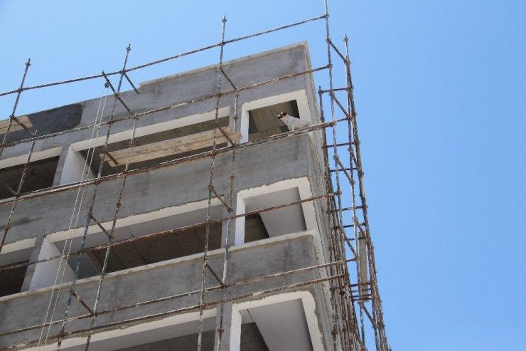 Köpek inşaat halindeki binanın 6'ıncı katına çıkınca