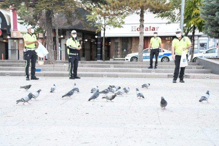 Aç kalan kuşları polis yemledi