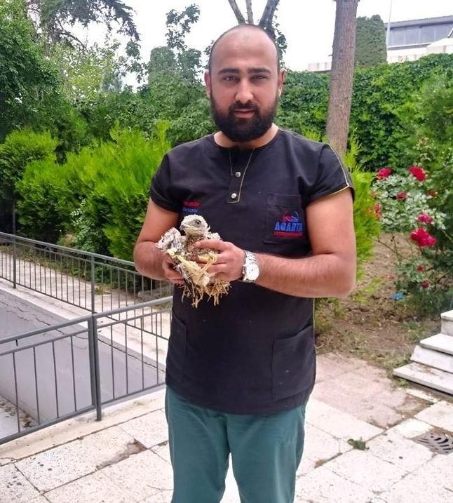 Konya'da bulunan yavru kartal koruma altına alındı