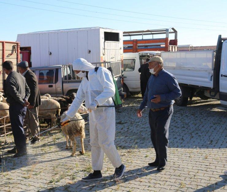 Ereğli hayvan pazarı dezenfekte çalışmalarının ardından kapılarını açtı