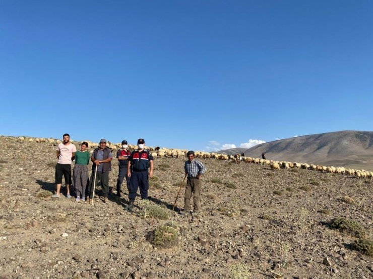 Kaybolan 300 koyunluk sürüyü jandarma droneyle buldu