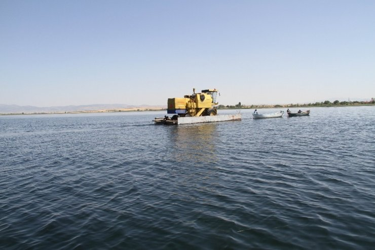 Beyşehir Gölü'nde yüzdürülerek adaya götürülen biçerdöverle hasat