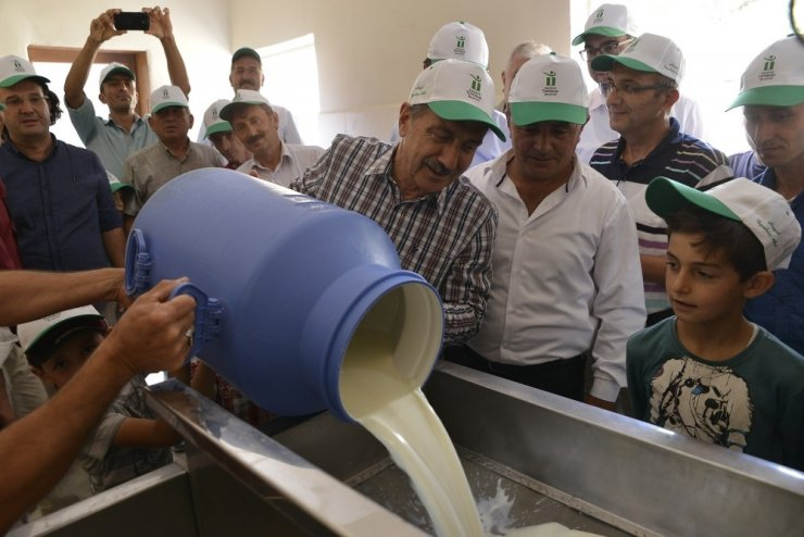 Günde 3 ton süt işleniyor