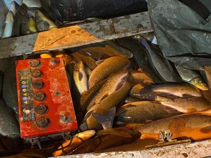 Kızılırmak'ta elektrikle balık avlayan şahıslar yakalandı