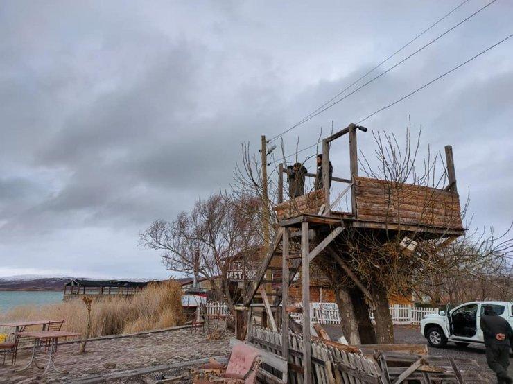 Sivas'ta su kuşu sayımı yapıldı