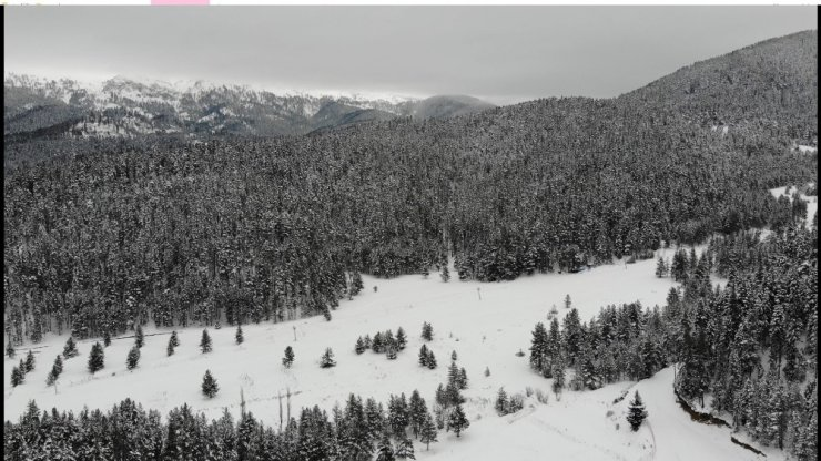 'Anadolu'nun yüce dağı' Ilgaz beyaza büründü, kar kalınlığı 40 santimetreyi buldu