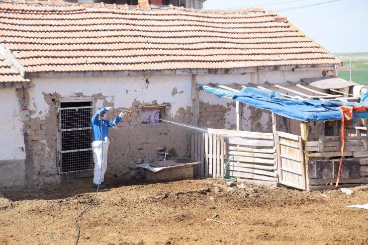 Aksaray'da kara sinek ve haşerelere karşı mücadele başlatıldı