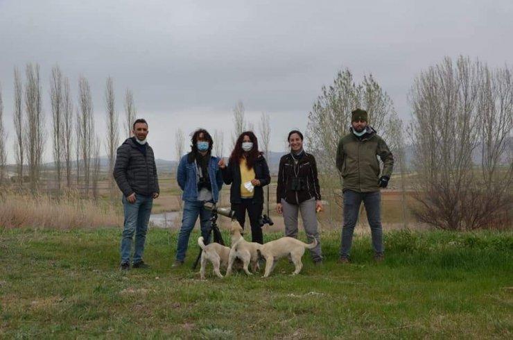 Eskişehir'de nesli tükenen kuşlar gözlendi