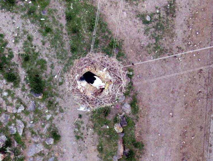 Leylekli köy