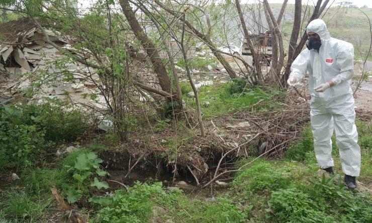 Çankaya'da bahar ilaçlaması
