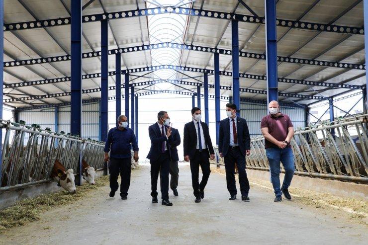 Beylikova'da açılan gıda işletmesinde 50 kişiye istihdam sağlanacak