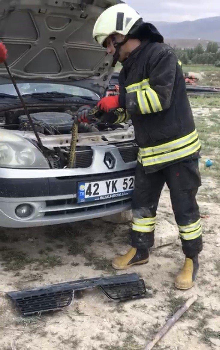 Otomobile giren yılanı itfaiye çıkarttı