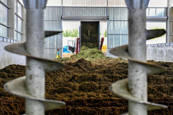 Ankara Büyükşehir Belediyesi'nde çimden gübre üretimi başladı