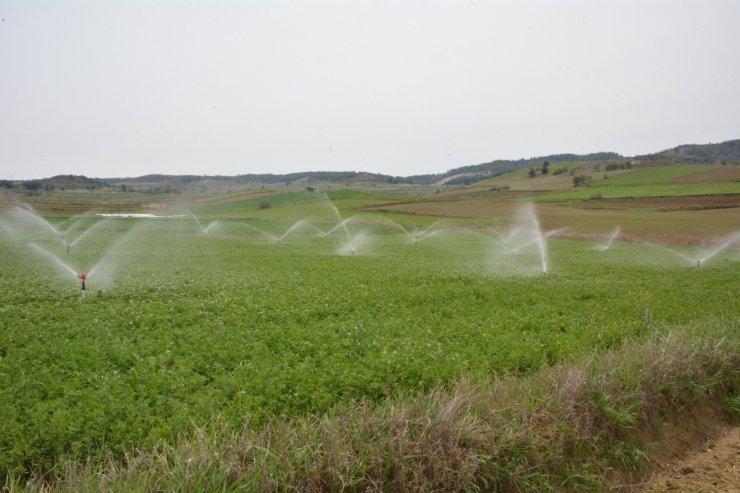 Bilecik'de sulama sezonu başladı