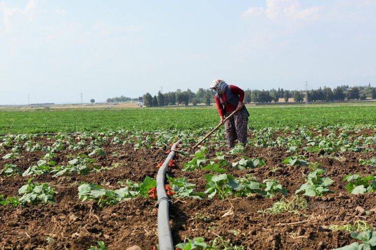 İmamoğlu Sulama Projesinde çalışmalar devam ediyor