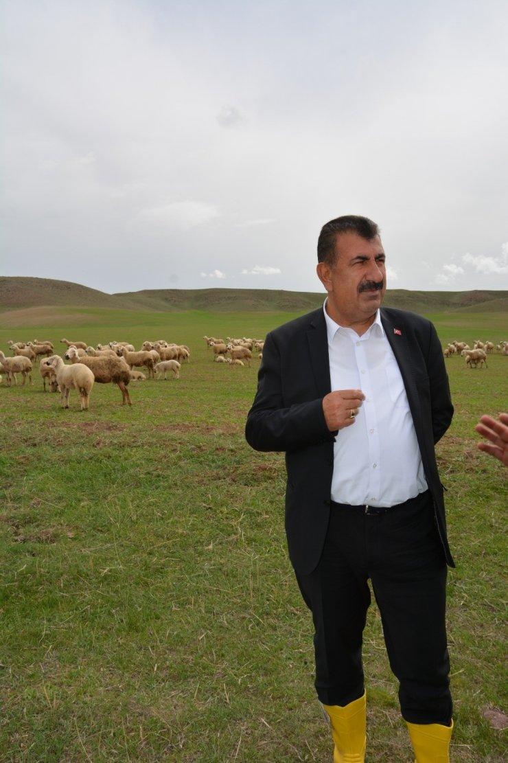 """TÜDKİYEB Genel Başkanı Çelik: """"Tarım en çok desteklenmesi gereken stratejik bir sektördür"""""""