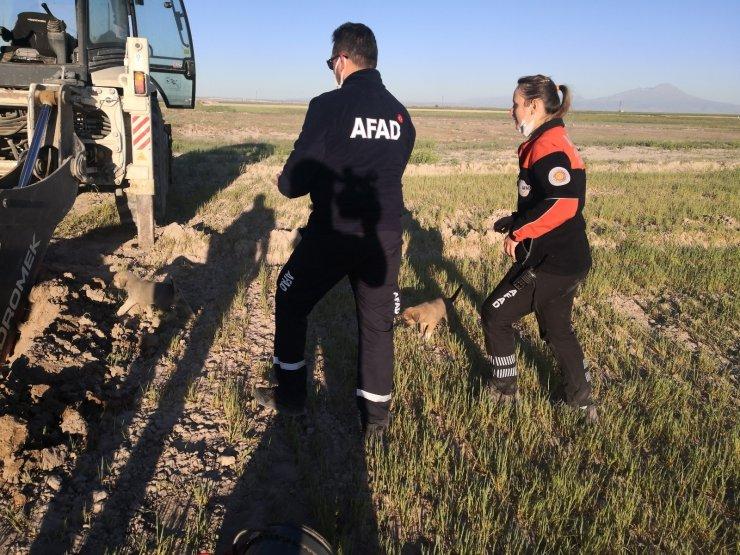 Kuyuya düşen 2 yavru köpek AFAD ekiplerince kurtarıldı
